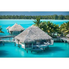 There's just something about overwater bungalows that makes life seem a little simpler. Visit @ St Regis Bora Bora to experience!!! #luxtripper #luxury #luxurytravel #travel #travelgram #instatravel #instago #escape #getaway #romance #luxuryhotel #resort #maldives #holiday #vacation #resort #honeymoon #bucketlist #BoraBora #beach #overwatervillas #sun #sea #sand Read more at www.luxtripper.co.uk or call us @ 02085343125