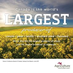 Fact photos | Categories | Agriculture More Than Ever | Page 4