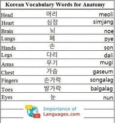 Korean Language 678284393867726270 - Learn Basic Korean Language – Learn Korean Language Guide Source by Learn Basic Korean Language, Learn Korean Alphabet, Korean Words Learning, Korean Language Learning, How To Speak Korean, Korean English, Learn Hangul, Korean Writing, Korean Phrases