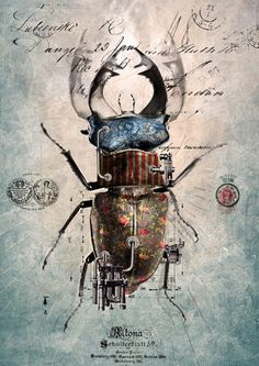 Entomology with steampunk? Art And Illustration, Steampunk Kunst, Insect Art, Gcse Art, Art Design, Graphic Design, Dieselpunk, Art Projects, Digital Art