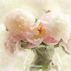Shabby chic home decor pink and white peonies by VintageChicImages, $25.00