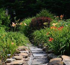 Beautiful Flowers Garden, Beautiful Gardens, Backyard Ideas, Garden Ideas, Lily Garden, Plant Design, Backyards, Nice Things, Garden Inspiration