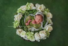 A year of beautiful babies ~ 2015 ~ Brisbane Newborn Photographer Newborn Posing, Newborn Baby Photography, Newborn Photographer, Children Photography, Photography Tips, Newborn Pictures, Baby Pictures, Newborn Pics, Toddler Photos