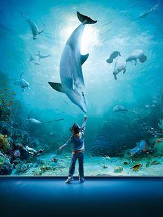 Largest Aquarium in Europe. Kids loved it!
