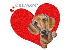 Dachshund Rescue, Mini Dachshund, Daschund, Dog Love, Puppy Love, Oriental Cat, Weenie Dogs, Doggies, Large Dog Breeds