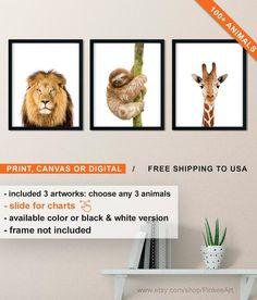 Shipped Nursery Canvas Set Animals, Modern Animal Art, Neutral Nursery Prints, Lion Sloth Giraffe, Jungle Animals Photos for Nursery Woodland Animal Nursery, Fox Nursery, Nursery Canvas, Nursery Neutral, Nursery Prints, Nursery Art, Animals Photos, Jungle Animals, Nursery Themes