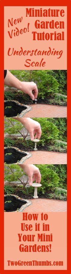 Miniature Garden Tutorial: Understanding Scale in the Miniature Garden