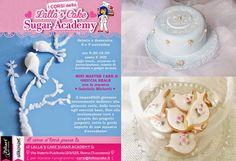 Lalla's Cake - sugar art & cake design: Mini Master Cake - GHIACCIA REALE