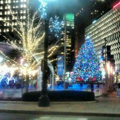 The Christmas Tree & Ice Rink at Campus Martius in Detroit