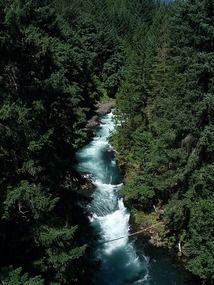 Whitewater rafting on the White Salmon River in Washington State