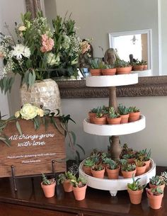 All the best succulent bridal shower ideas! Succulents are the new trend for weddings and celebrations. Find everything about succulent theme for the party
