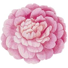Ballard Designs Camellia Placemats - Set of 4 ($49) ❤ liked on Polyvore featuring home, kitchen & dining, table linens, decor, fillers, flowers, backgrounds, pink placemats, flower stems and ballard designs