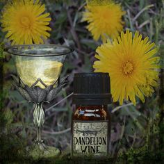 Dandelion Wine Perfume Oil by HagRoot. This enchanting oil is fit for a faery queen. Dandelion Wine is a sweet and magical blend of wild summer dandelions, tart green apples, fresh green grass, intoxicating sweet ylang ylang and golden flowering hops.