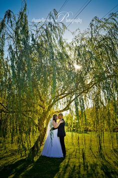 Couple in a tree canopy at Sunset