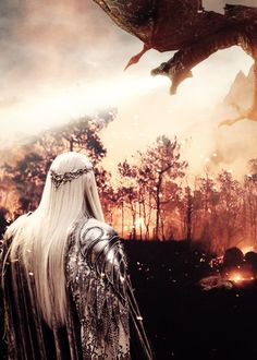 """""""Do not talk to me of dragon fire! I know its wrath and ruin. I have faced the great serpents of the north!"""""""