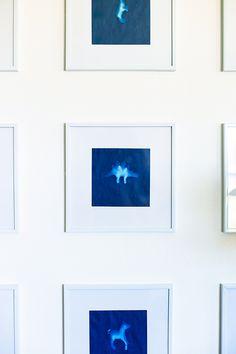 DIY Cyanotype Sun Prints