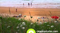 Vídeo playa de Vega #Ribadesella #Asturias [Más info] http://www.desdeasturias.com/la-playa-de-vega/