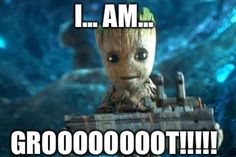 Im groot, ajam, Iam groot, ajam, I am Groot?? NOOOOOOOO