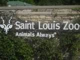 ~ St. Louis Zoo ~