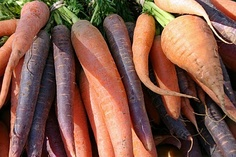 Farmer's Markets are such visual treats and the Santa Fe Market this past weekend was brimming with eye candy. Santa Fe Market, Farmers Market, Harvest, Carrots, Eye Candy, Gardening, Treats, Vegetables, Live