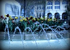 Fountain and Flowers at the downtown square. #water #fountain #Arkansas
