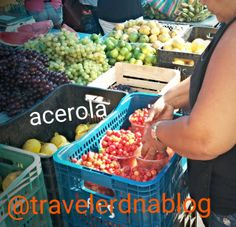 Organic farmers markets in Brazil