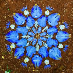 Inspiration of the day! Please share your most inspiring stories/ daily happenings/ quotes/ song lyrics beneath! Fractals In Art, Fractal Art, Flower Circle, Flower Mandala, Carpe Diem, Mandala Artwork, Indigo Children, Bohemian Art, Etsy Crafts