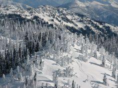 Snow ghost exploration . . .    Big Mountain, Montana, Big Sky