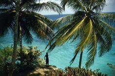 Jamaica… ma non la solita Jamaica! Serena e Valentina ce la raccontano. http://www.evolutiontravelitalia.it/press/2014/03/20/jamaica-ma-non-la-solita-jamaica-serena-e-valentina-ce-la-raccontano/