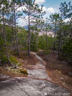 Blueberry Mountain Trail, New Hampshire