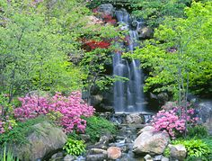 love the combination of water, color, greenery and rocks