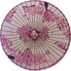 Japanese Umbrella - cherry blossoms 和傘  白地に桜