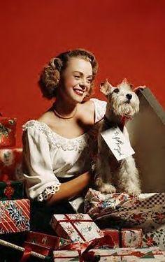 June Lockhart & Her Schnauzer Mini Schnauzer Puppies, Schnauzer Puppy, Miniature Schnauzer, Schnauzers, June Lockhart, Small Breed, Dog Houses, In Hollywood, Puppy Love