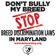 All dog owners should be held responsible for their dogs, not just pit bull owners. END BSL!