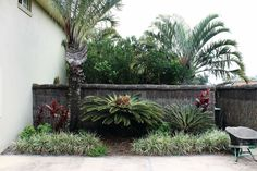 The Brushwood looks great as a back drop behind a nice garden  http://www.ballinabestfencing.com.au