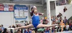 American Gymnastics Club - http://www.activexplore.com/activity/american-gymnastics-club/
