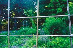 © Jacques Le Priol, Jardin botaniquedu Jardin public, Bordeaux,RÊVERIES AU-DESSUS DU JARDIN - Plusieurs entrées possibles pour le Jardin public: coursde Verdun, place Bardineau, rue du Jardin-Public, place du Champ-de-Mars, rue d'Aviau. Il est ouvert du 1er juin au 31 août, entre 7 h et 21 h - Green-washin - VOUS ALLEZ ÊTRE DÉ-PAYSAGÉS !, par Aurélien Ramos et Sophie Poirier - JP#04