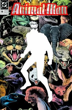 The cover to Animal Man #18 (1989), art by Brian Bolland