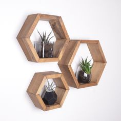 3 Hexagon Shelves, Honeycomb shelves, Geodesic Shelves, Hexagon Shelf, Hexagon Shelves, honeycomb shelf, floating shelf, floating shelves by GRAINandGRIT on Etsy https://www.etsy.com/listing/515507163/3-hexagon-shelves-honeycomb-shelves