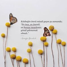 Talk to yourself Following Your Heart Quotes, Follow Your Heart, My Heart, Path Quotes, Life Quotes, Beautiful Verses, Butterfly Quotes, Buddha Zen, Quotes About Photography