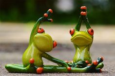 Sport Gymnastics Frog Funny Fitness F You Fitness, Physical Fitness, Fitness Tips, Funny Fitness, Nerd Fitness, Fitness Exercises, Cardio Fitness, Sport Fitness, Personal Fitness