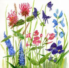 Botanical Floral Watercolor Garden Art Original Painting