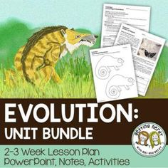 Getting Nerdy Science: Life Science and Biology Lessons Biology Lessons, Science Biology, Science Lessons, Life Science, Science And Nature, High School Biology, Middle School Science, Types Of Camouflage, Powerpoint Lesson
