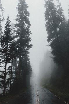 captvinvanity:   SamAlive  Fog