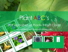 Montessori PDF Plant ABC's, Alphabet of Plants 3 Part Cards