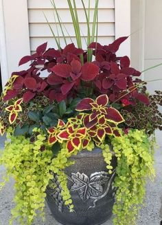 Cool 90 Fantastic Vegetable and Flower Container Garden Design Ideas for Summer . - Cool 90 fantastic vegetable and flower container garden design ideas for summer … – flower gard - Garden Yard Ideas, Diy Garden, Garden Pots, Backyard Ideas, Container Flowers, Container Plants, Container Gardening, Vegetable Gardening, Front Yard Landscaping
