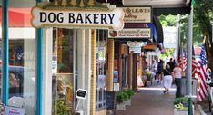 Downtown Waynesville NC Weekend Trips, Weekend Getaways, Day Trips, Waynesville North Carolina, Timber Cabin, Dog Bakery, Big Bear Lake, Brewery, Things To Do