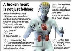 Broken Heart Symptoms   Broken Heart Syndrome Symptoms and Treatment   MyDocHub - Health News ...