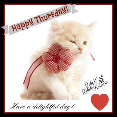 Have a delightful day! Thursday Prayer, Thursday Meme, Thursday Greetings, Happy Thursday Quotes, Thursday Pictures, Photos For Facebook, Morning Pictures, Morning Pics, Good Morning Quotes