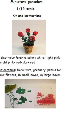 Hey, I found this really awesome Etsy listing at https://www.etsy.com/listing/98910523/miniature-geranium-kit-and-instructions
